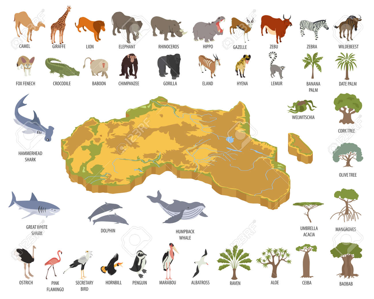 Flat 3d Isometric Africa Flora And Fauna Map Constructor Elements