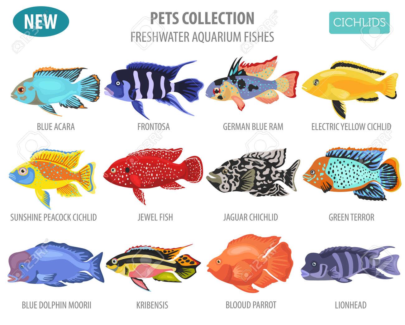 Freshwater Aquarium Fishes Breeds Icon Set Flat Style Isolated