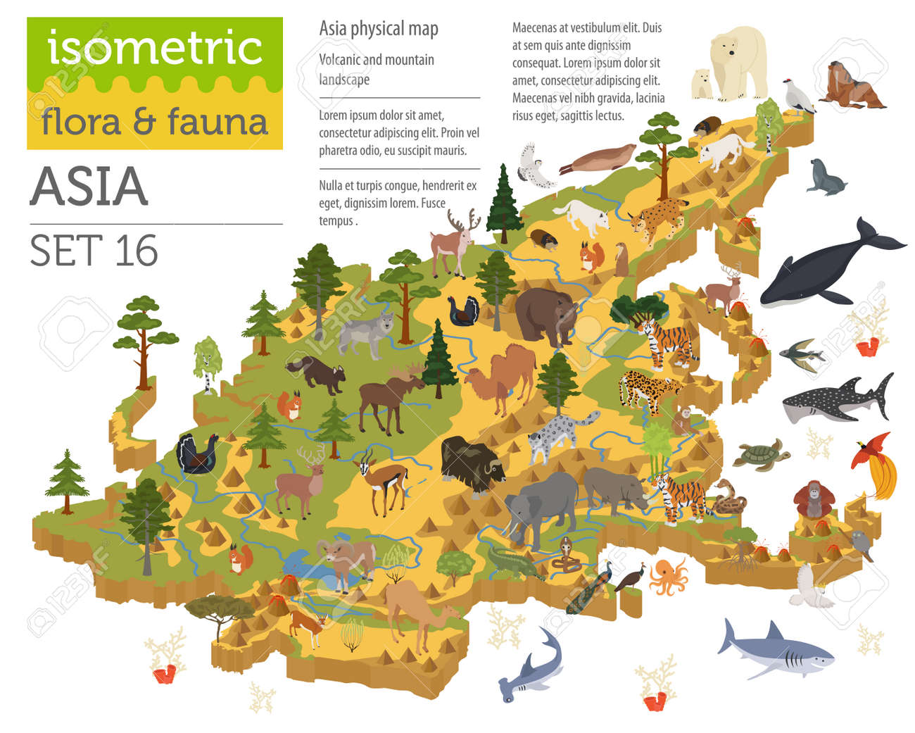 Isometric 3d Asian Flora And Fauna Map Constructor Elements