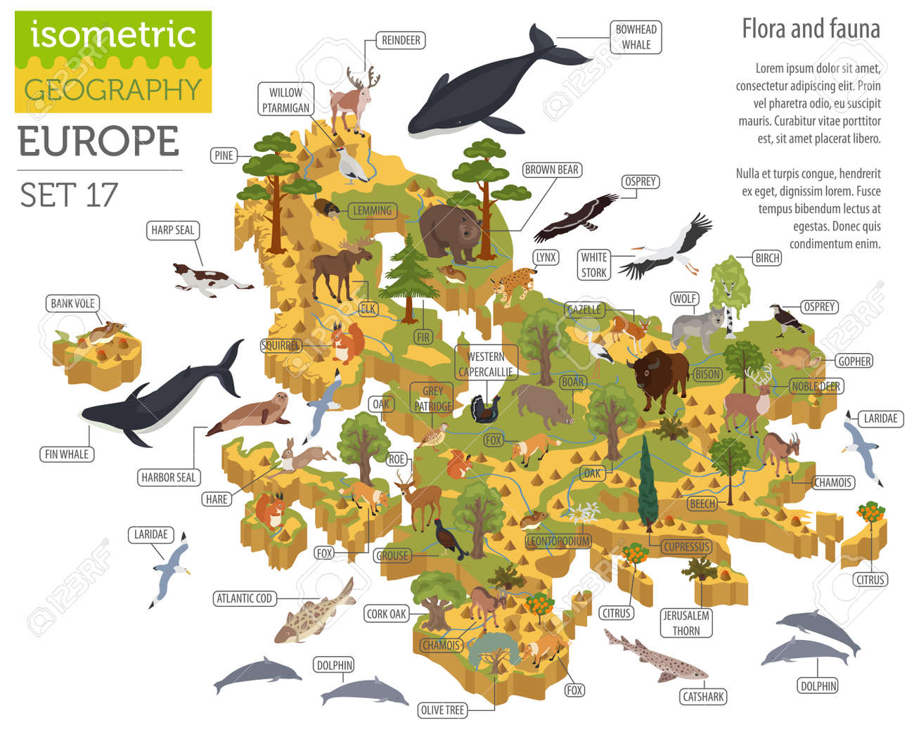Isometric 3d European Flora And Fauna Map Constructor Elements