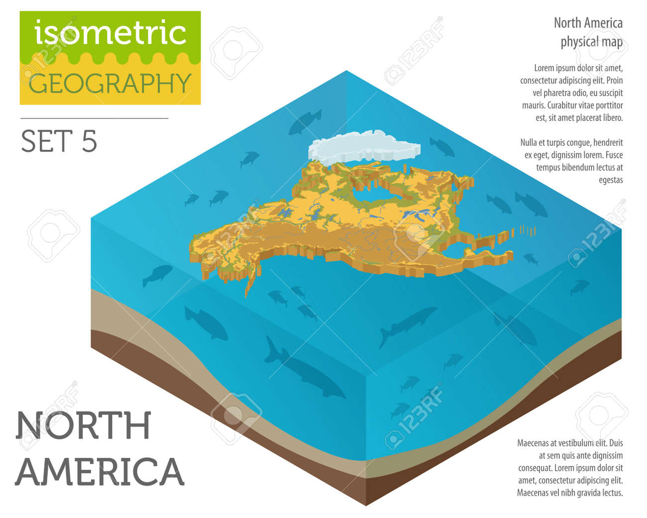 Isometric 3d North America physical map elements. Build your..