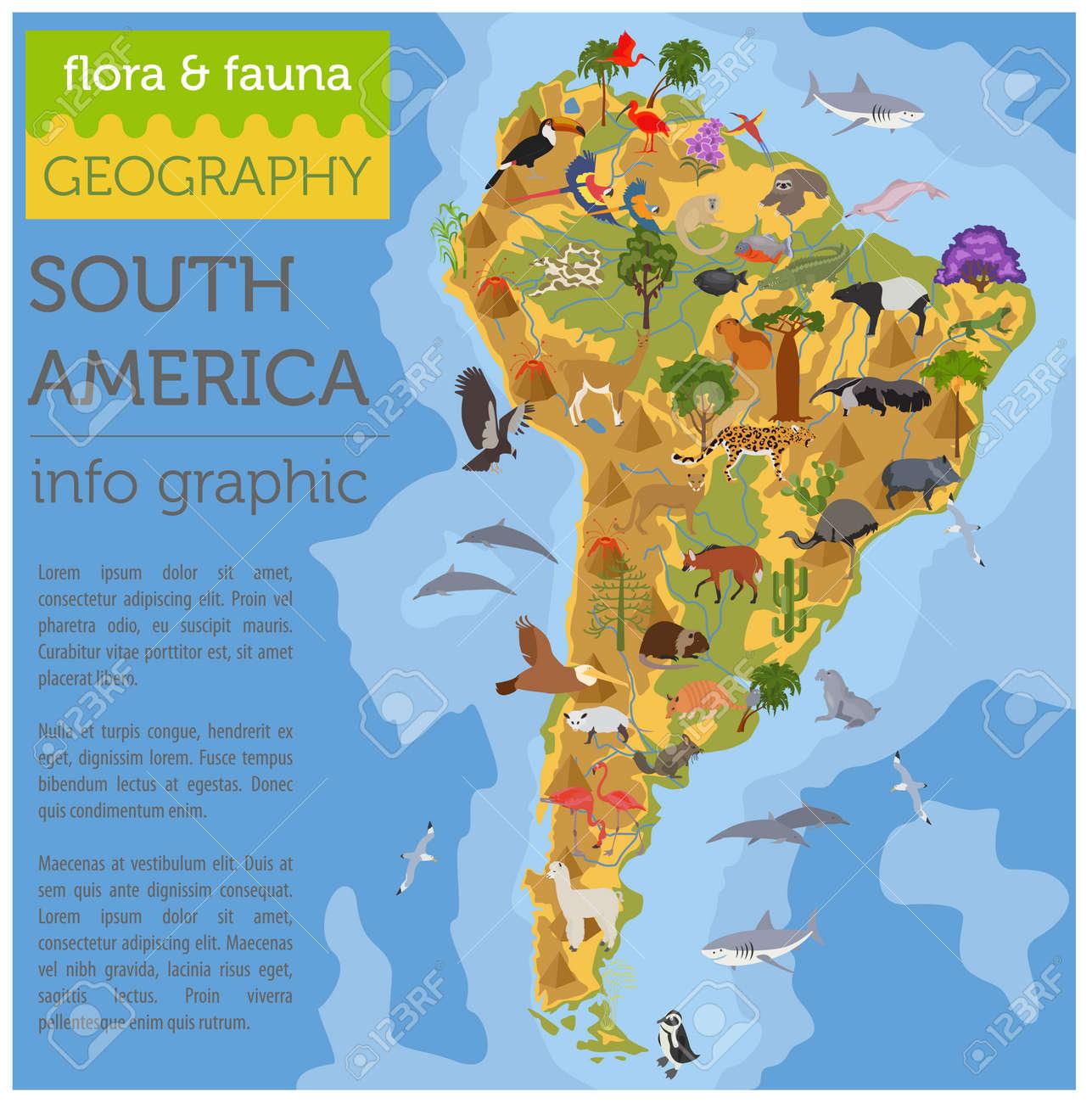 Mapa De Flora Y Fauna De América Del Sur, Elementos Planos. Animales ...