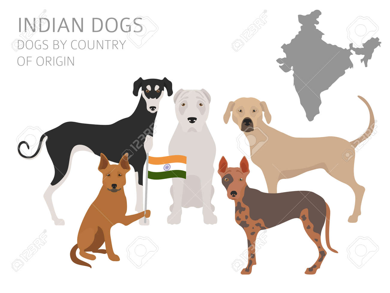 origins of dogs essay The history of dog domestication is that of an ancient partnership between dogs (canis lupus familiaris) and humans in 2016, a research team led by bioarchaeologist greger larson (frantz et al cited below) published mtdna evidence for two places of origin for domestic dogs: one in eastern eurasia.