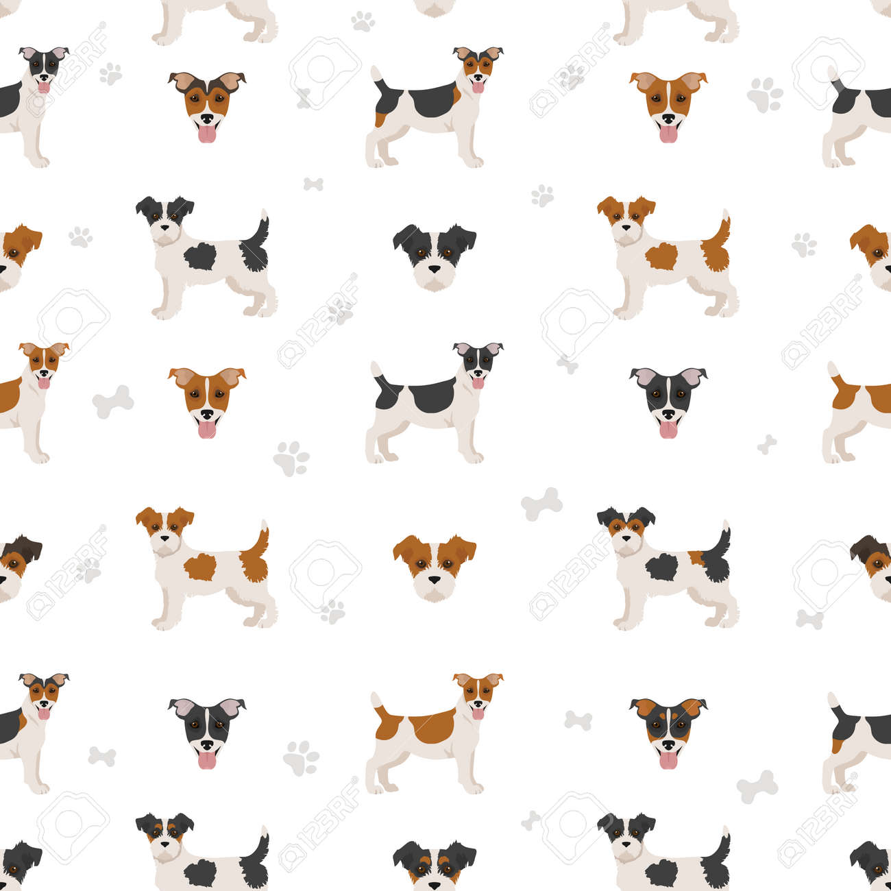 Jack Russel terrier in different poses and coat colors seamless pattern. Adult dogs and puppy set. Vector illustration - 168789349