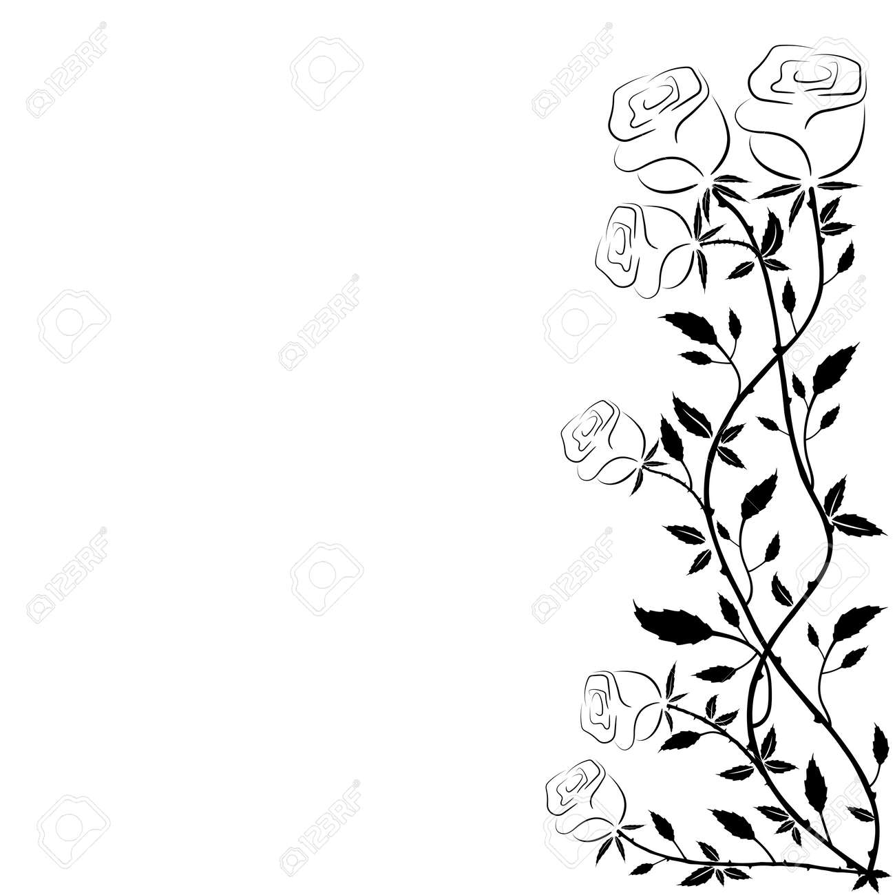 The Simple Frame Of Roses On A White Background Design For Greeting