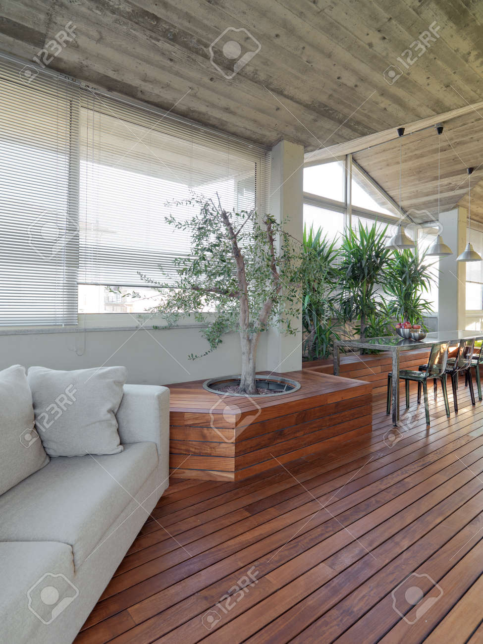 Exterior View Of A Modern Terrace With Gray Fabric Sofa, Plants, Wood Floor  And