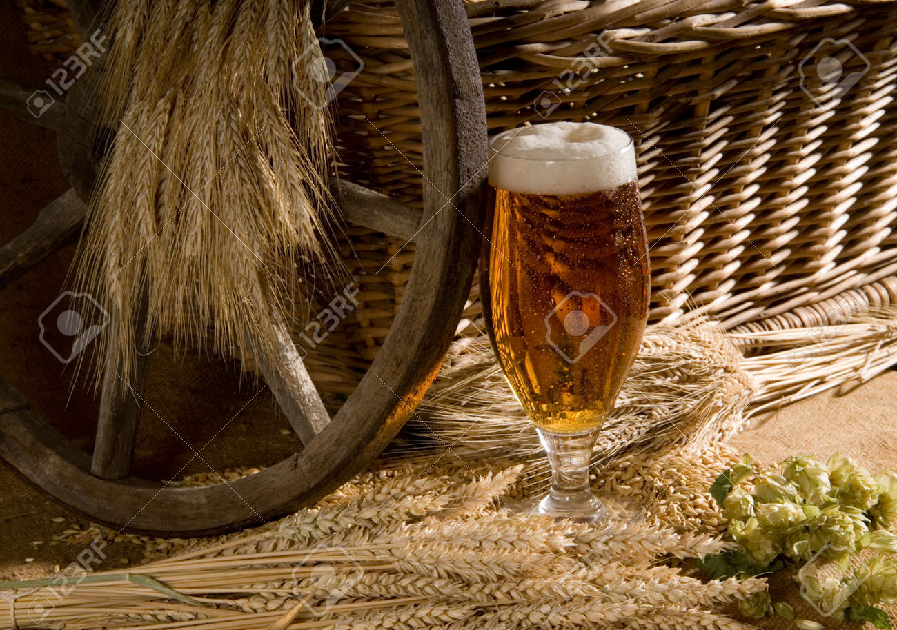 still life with beer Stock Photo - 10519942