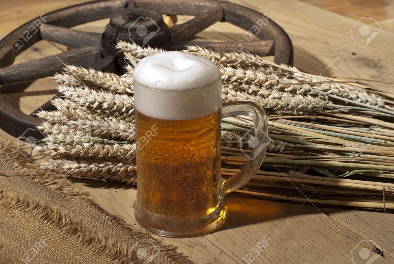 beer Stock Photo - 10577004
