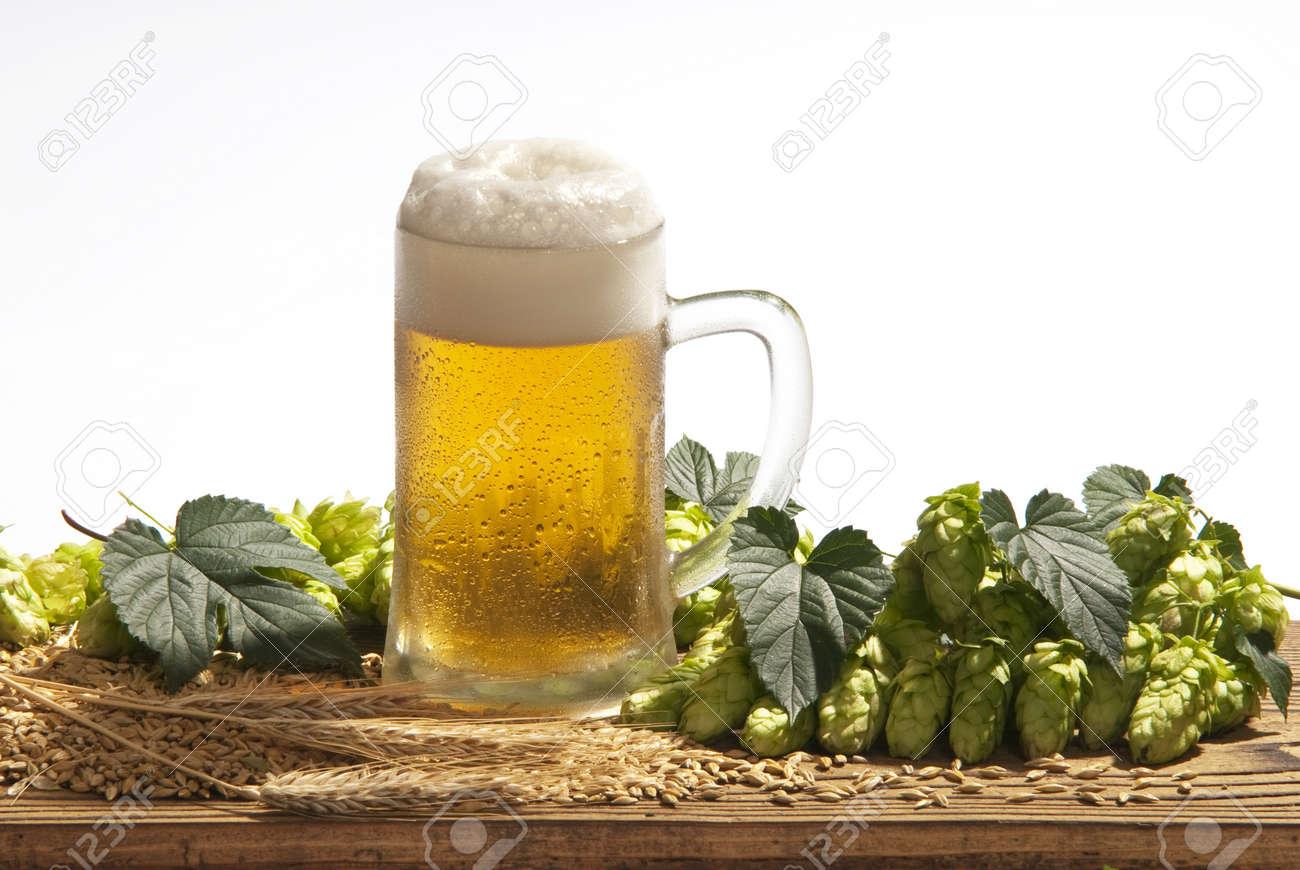 beer Stock Photo - 11194328