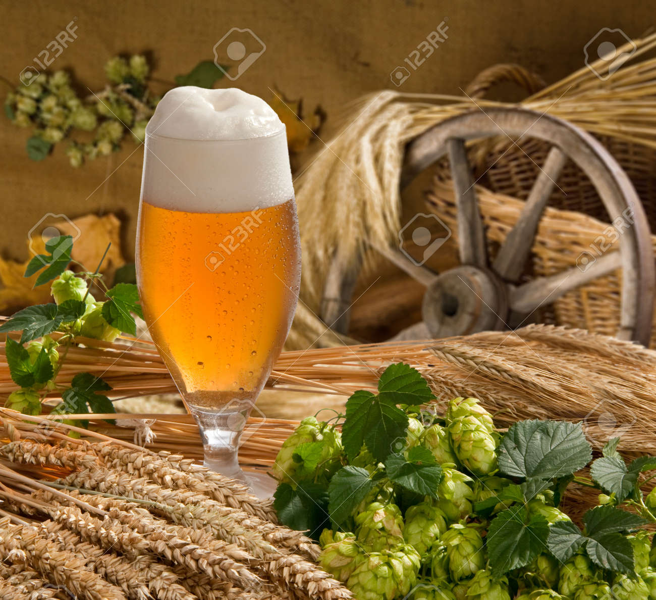 beer Stock Photo - 13122378