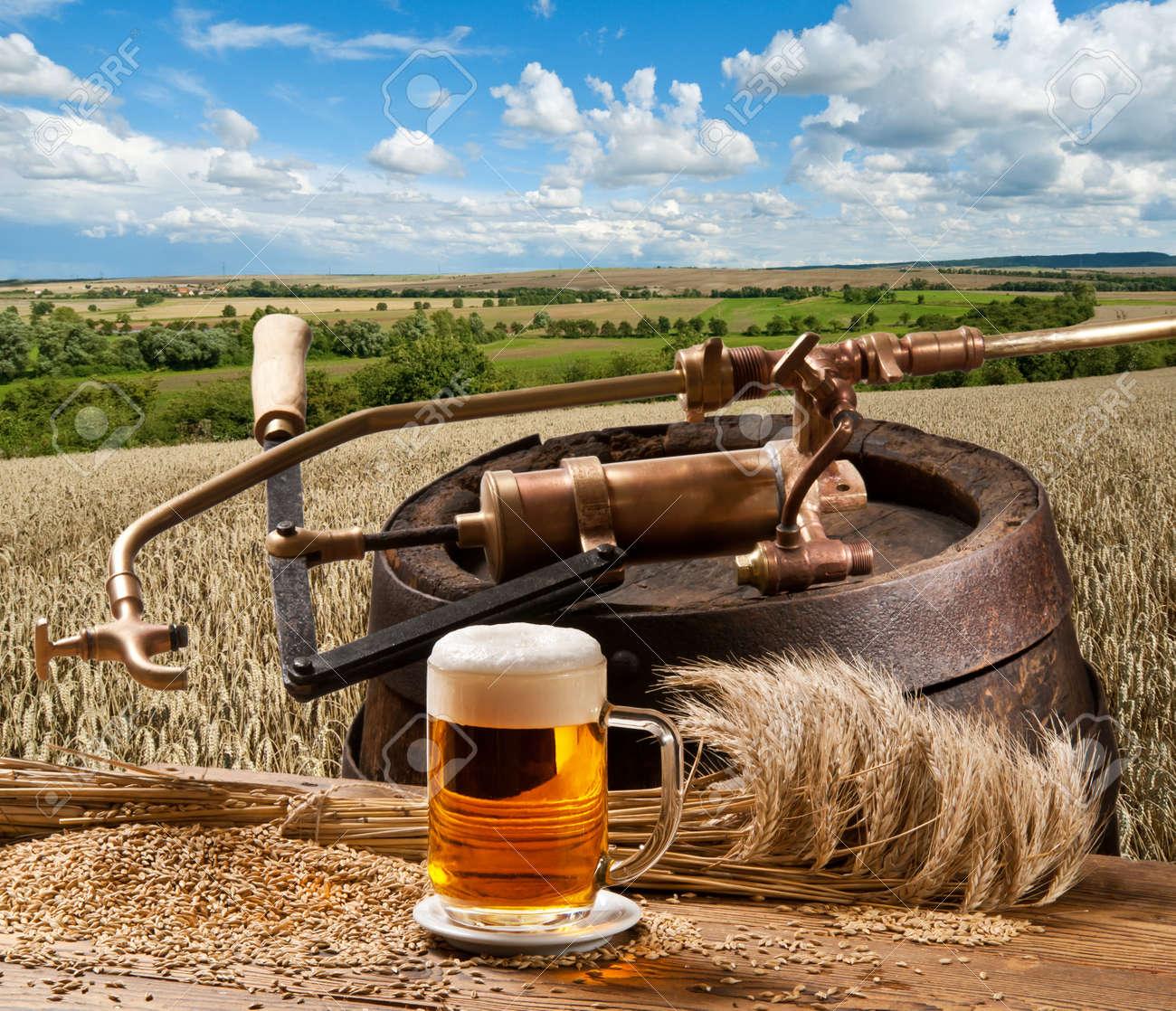 beer Stock Photo - 14021263