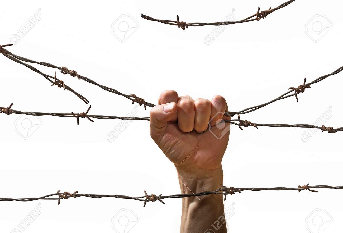 Berühmt Barbed Wire Band Greenville Fotos - Elektrische Schaltplan ...