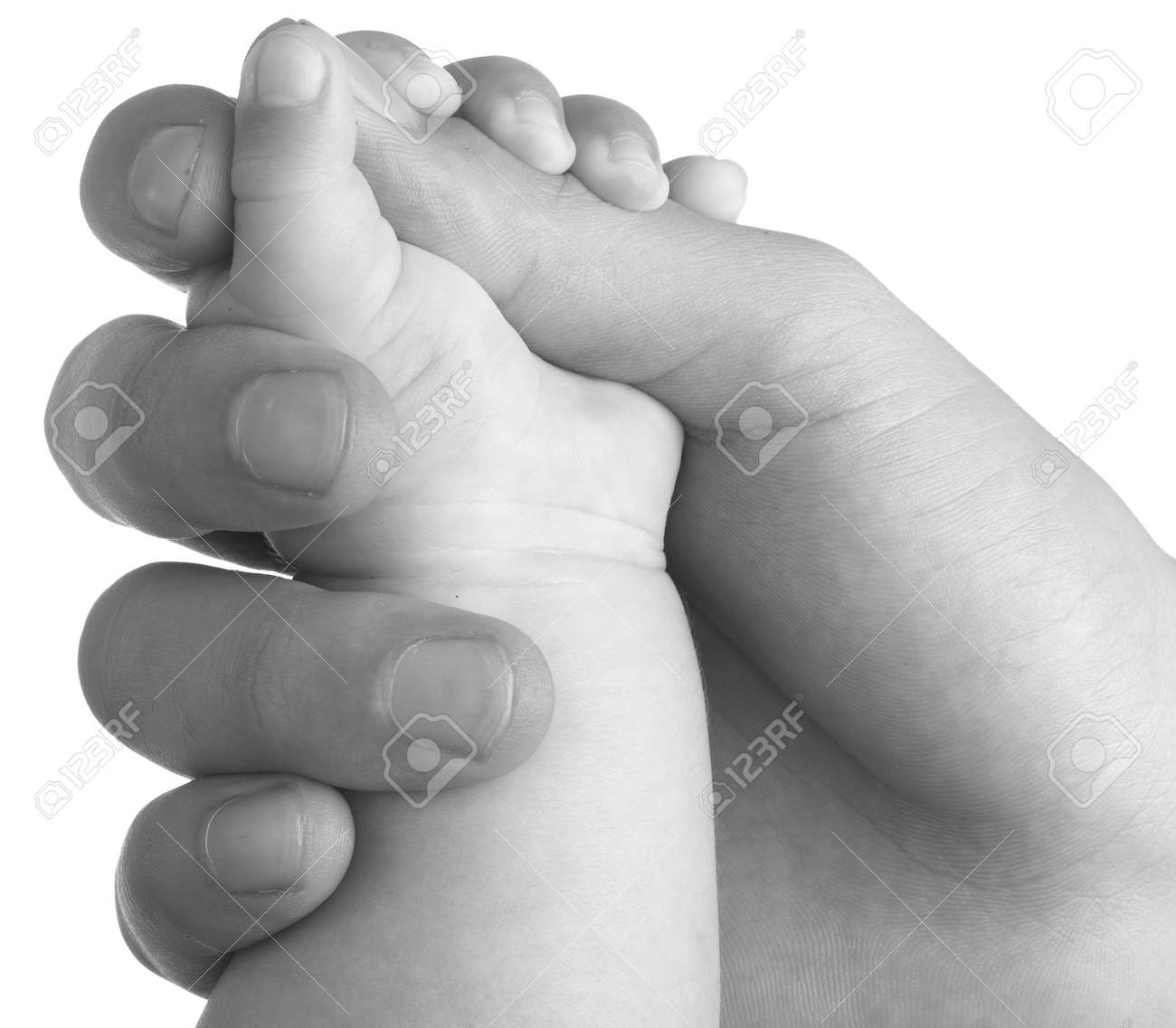 adult hand holding a baby hand closeup, black and white Stock Photo - 8476983