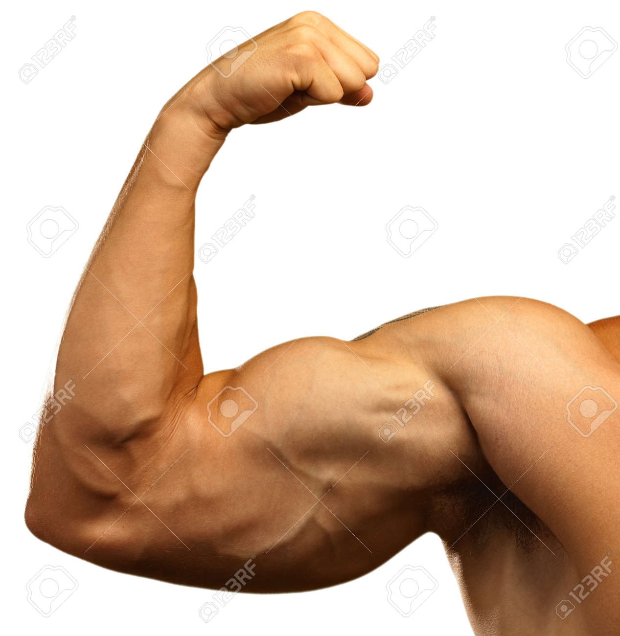 10364377-strong-biceps-on-a-white-backgr