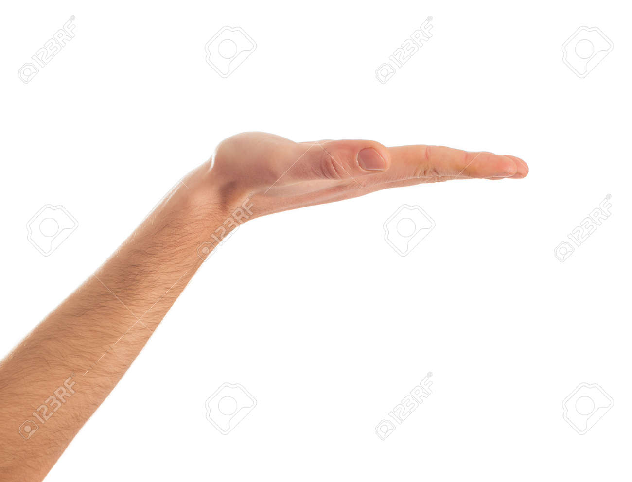 Close-up Of Human Hand Presenting On White Background - 22036448
