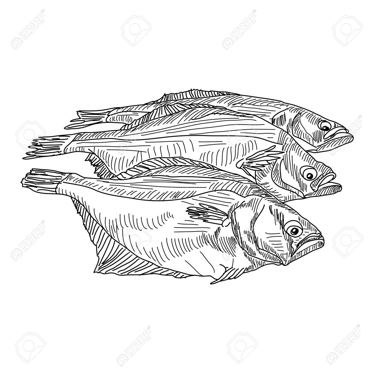 vector drawing hand fish Stock Vector - 10960821