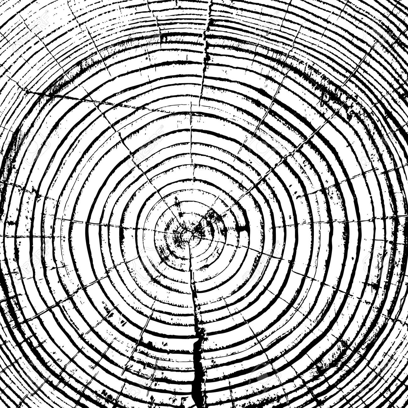 Tree rings saw cut tree trunk background. Vector illustration. - 35272773