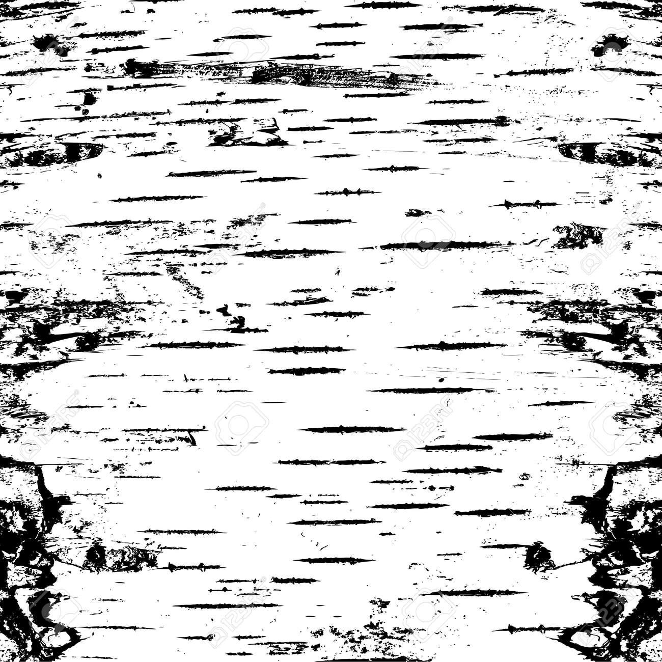 bark of birch in the cracks texture. Vector illustration. - 39162049