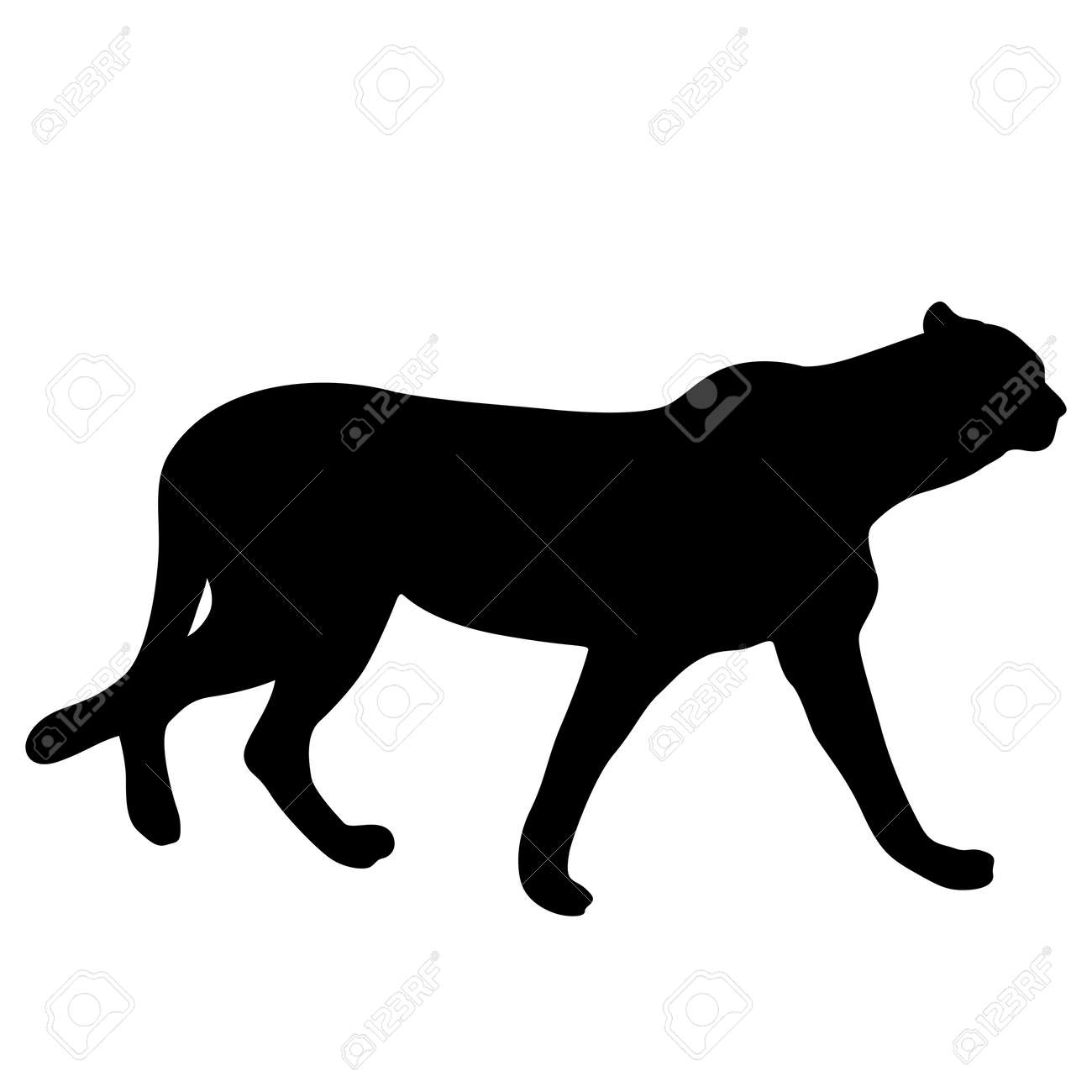silhouette of the lynx on a white background royalty free cliparts