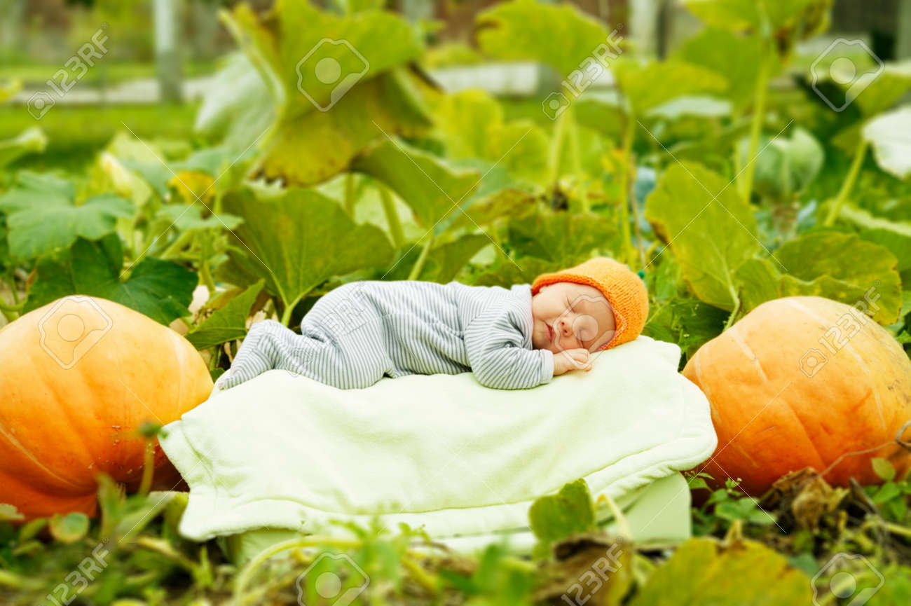 baby sleeping on big pumpkin Stock Photo - 17495358