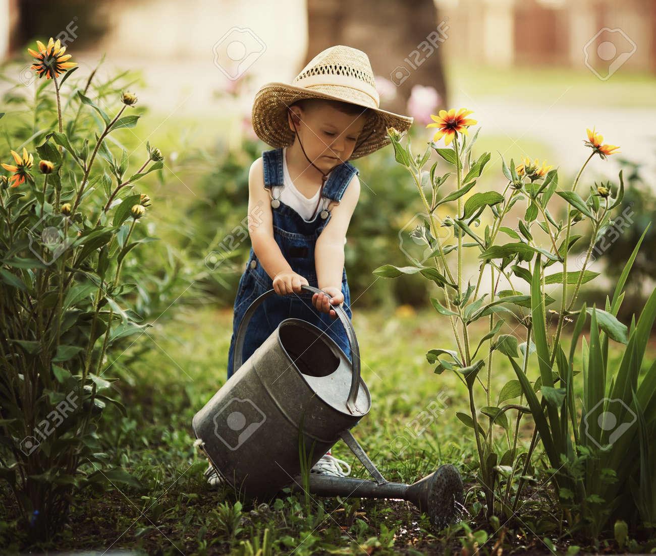 kids gardening cute little boy watering flowers watering can stock photo