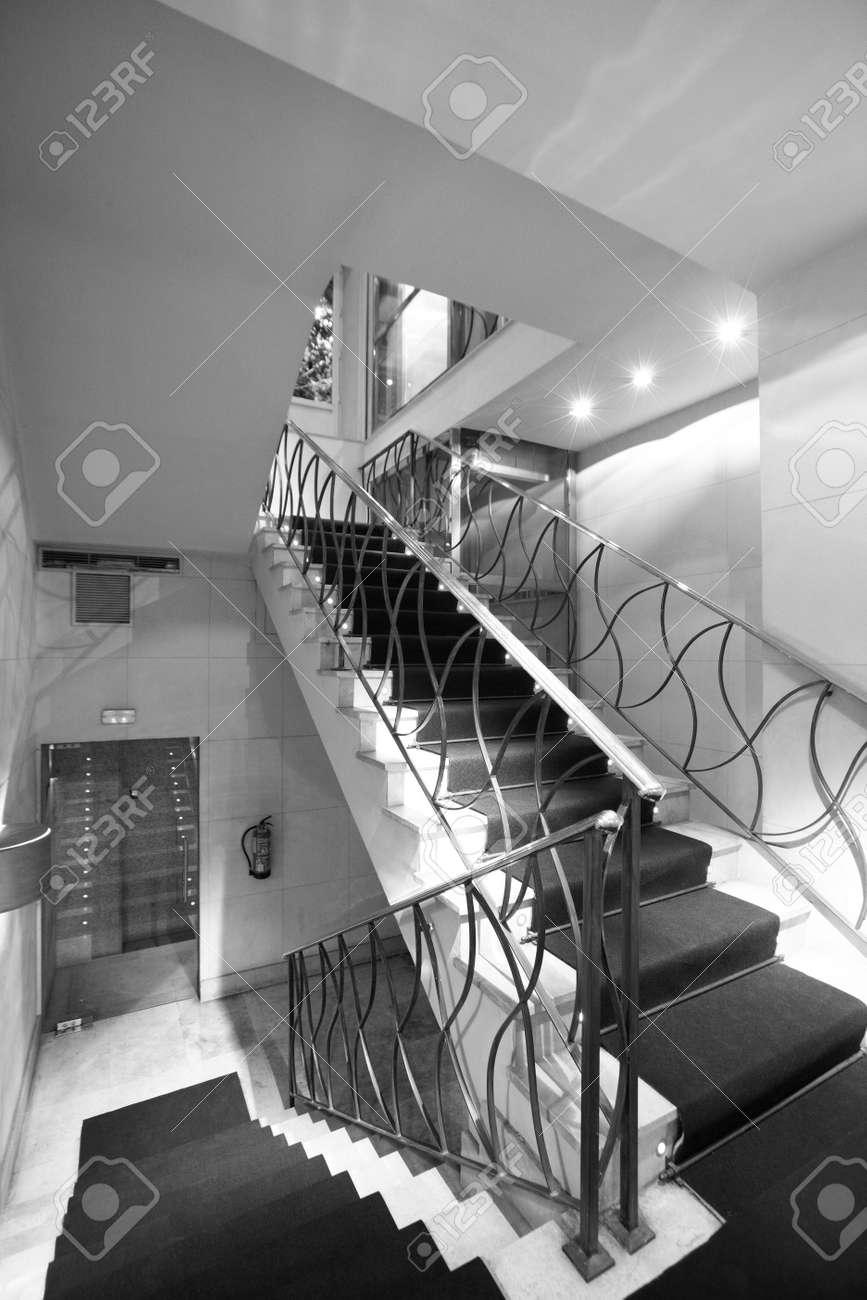 Escalier Hôtel Avec Tapis Vertical Noir Et Blanc