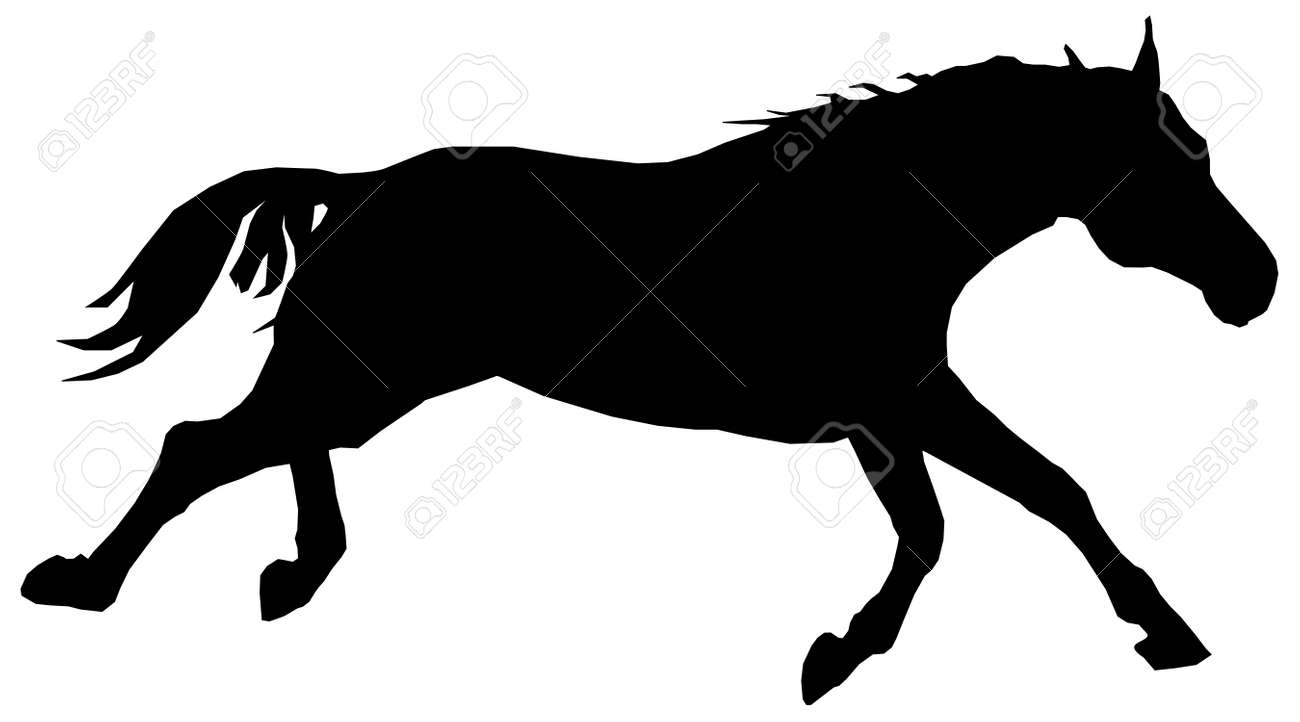 Silhouette Of A Running Horse Stock Photo Picture And Royalty Free Image Image 8084340