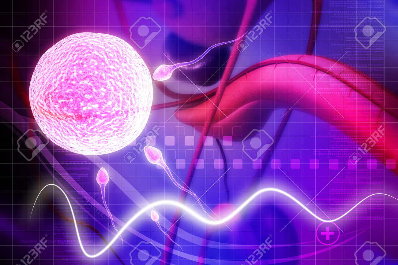 Male Reproductive System In Digital Background Stock Photo Picture