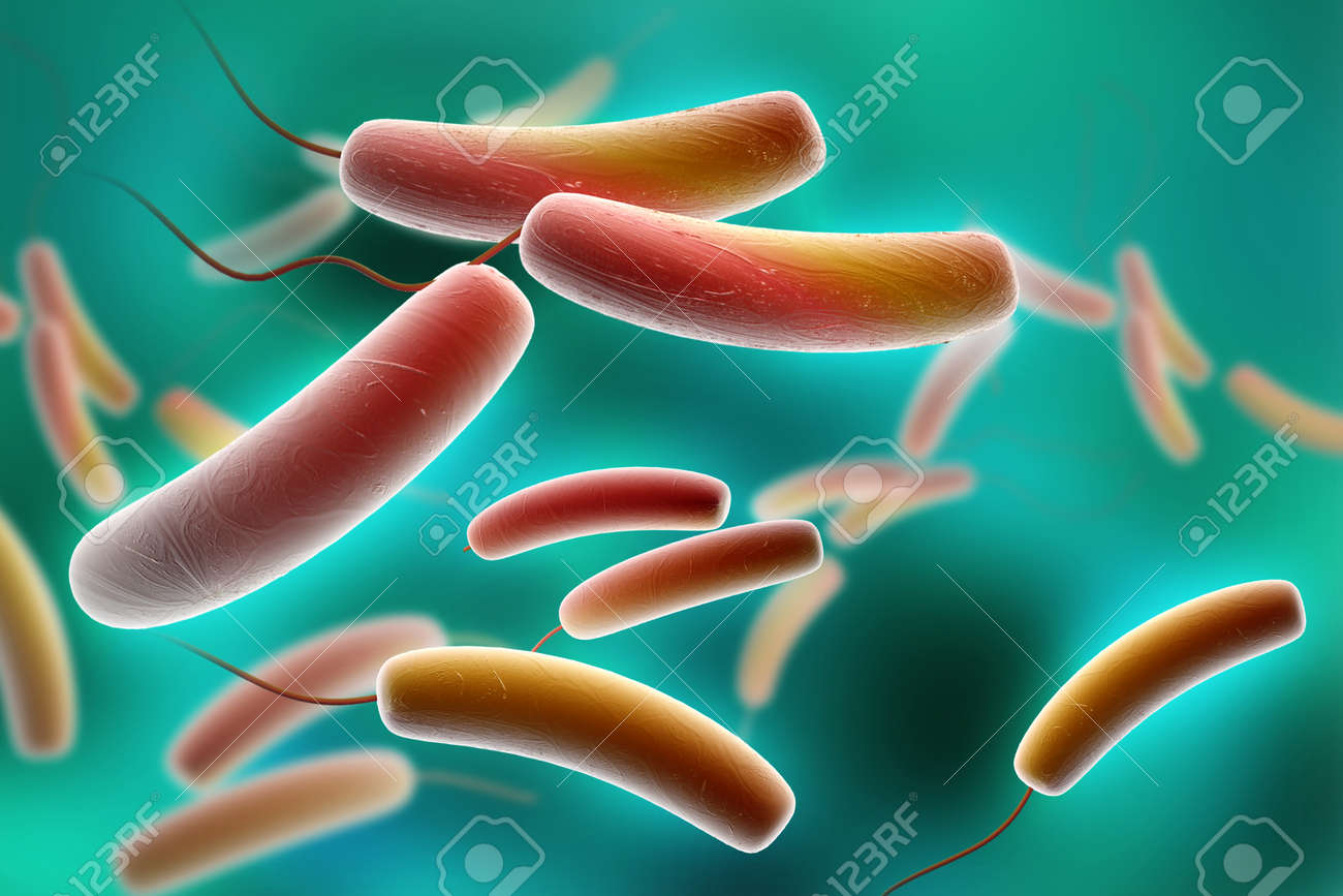 Digital illustration of Coli bacteria in colour background Stock Illustration - 15324487