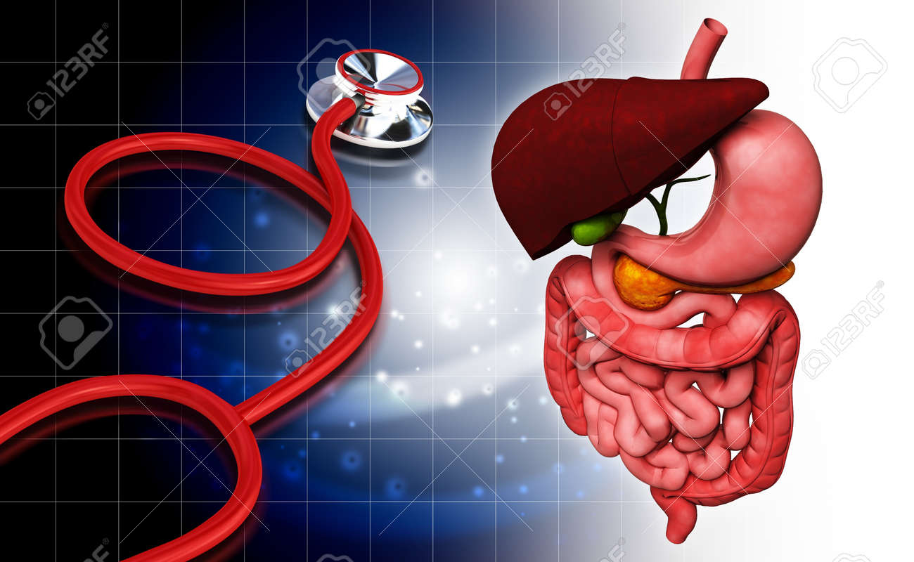 Digital illustration of stethoscope and  human digestive system in colour background Stock Illustration - 15962741