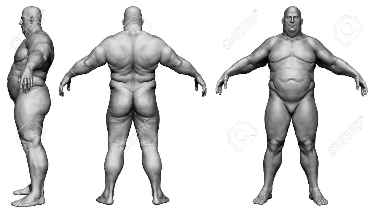 The Human Body In Overweight Body Fat Man Isolated Model Stock Photo Picture And Royalty Free Image Image 134751628