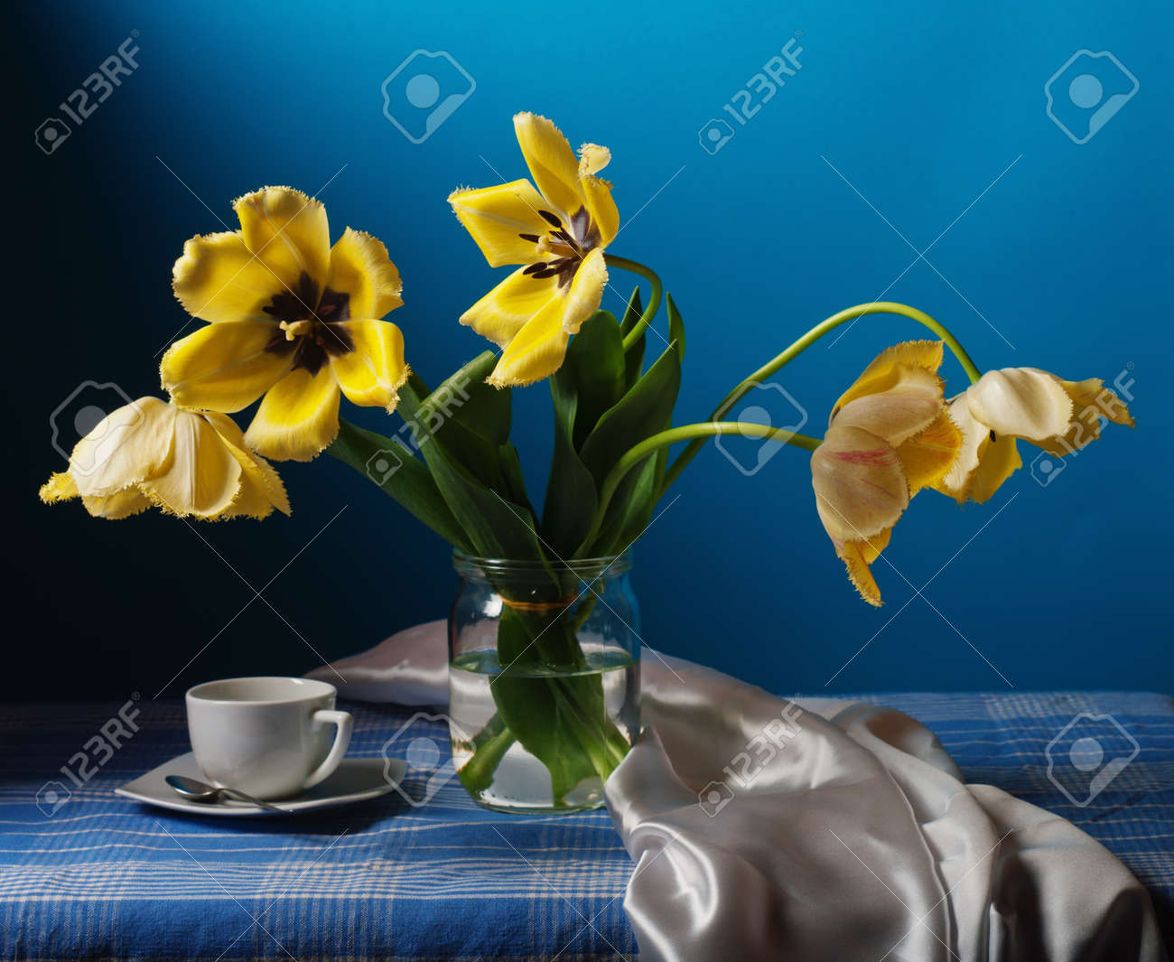 Still life with yellow tulips Stock Photo - 13338487