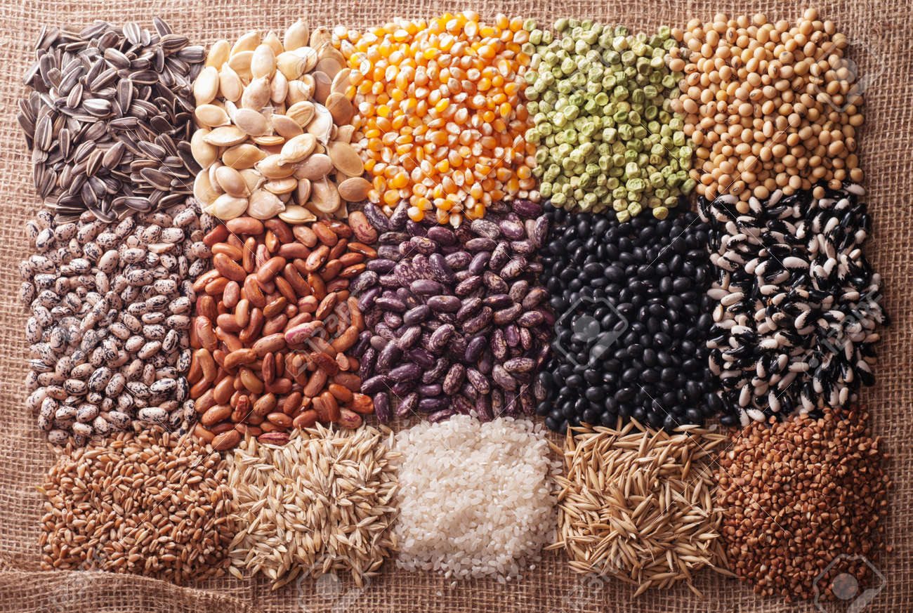 Cereal Grains , Seeds, Beans Stock Photo, Picture And Royalty Free Image.  Image 36747483.