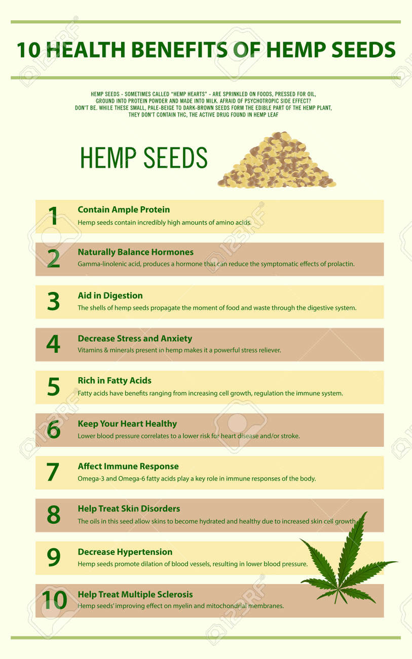 10 Health Benefits Of Hemp Seeds Vertical Infographic Illustration Royalty Free Cliparts Vectors And Stock Illustration Image 130837071