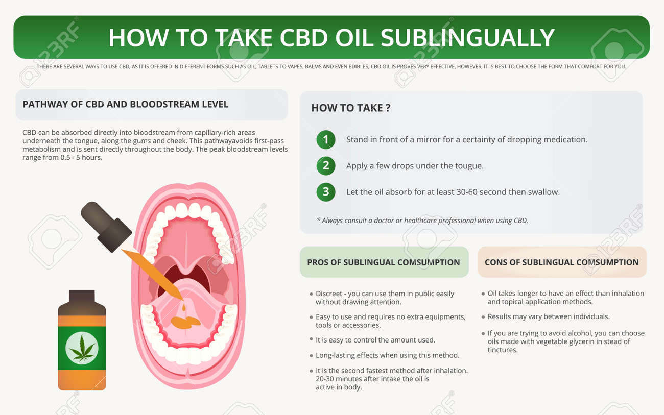 How to Take CBD Oil Sublingually horizontal textbook infographic illustration about cannabis as herbal alternative medicine and chemical therapy, healthcare and medical science vector. - 134837002