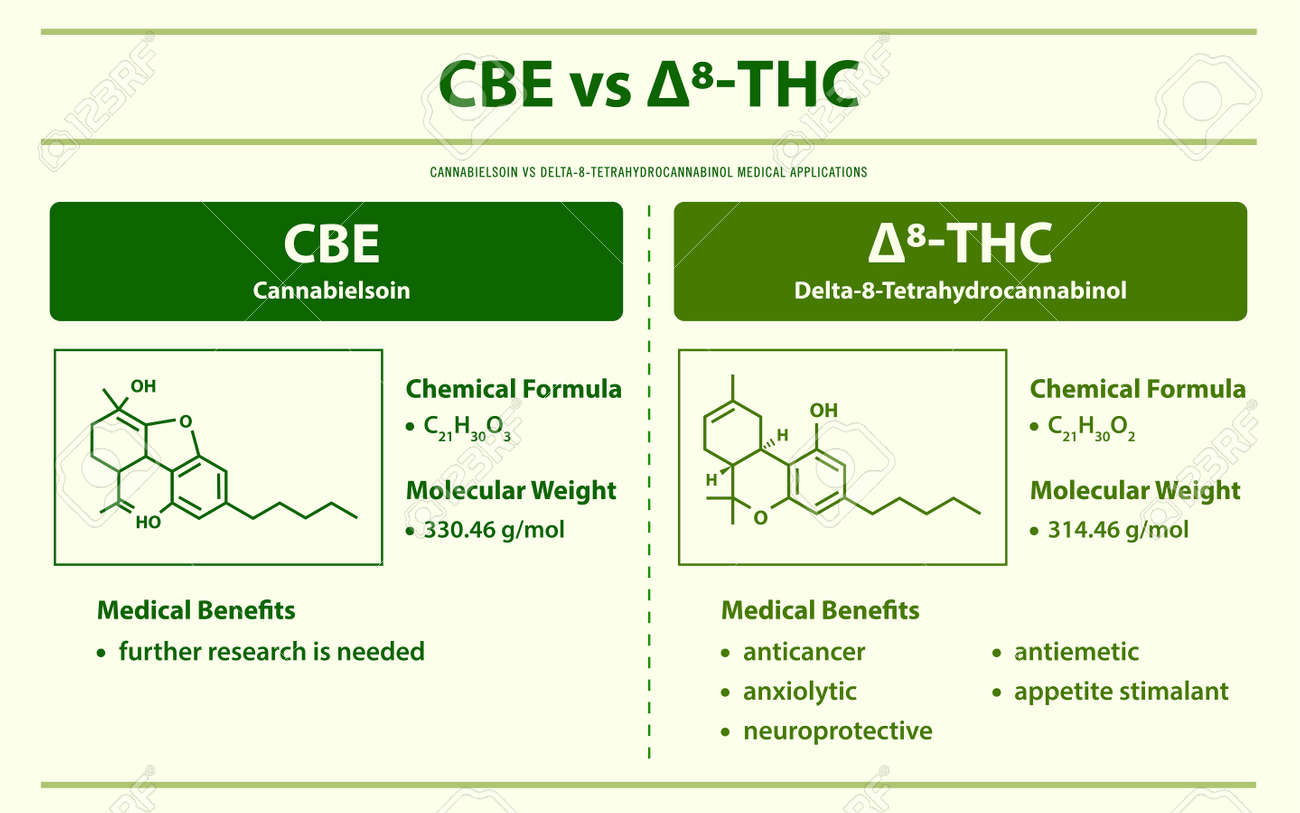 CBE vs ∆8-THC, Cannabielsoin vs Delta 8 Tetrahydrocannabinol horizontal infographic illustration about cannabis as herbal alternative medicine and chemical therapy, healthcare and medical science vector. - 165158213