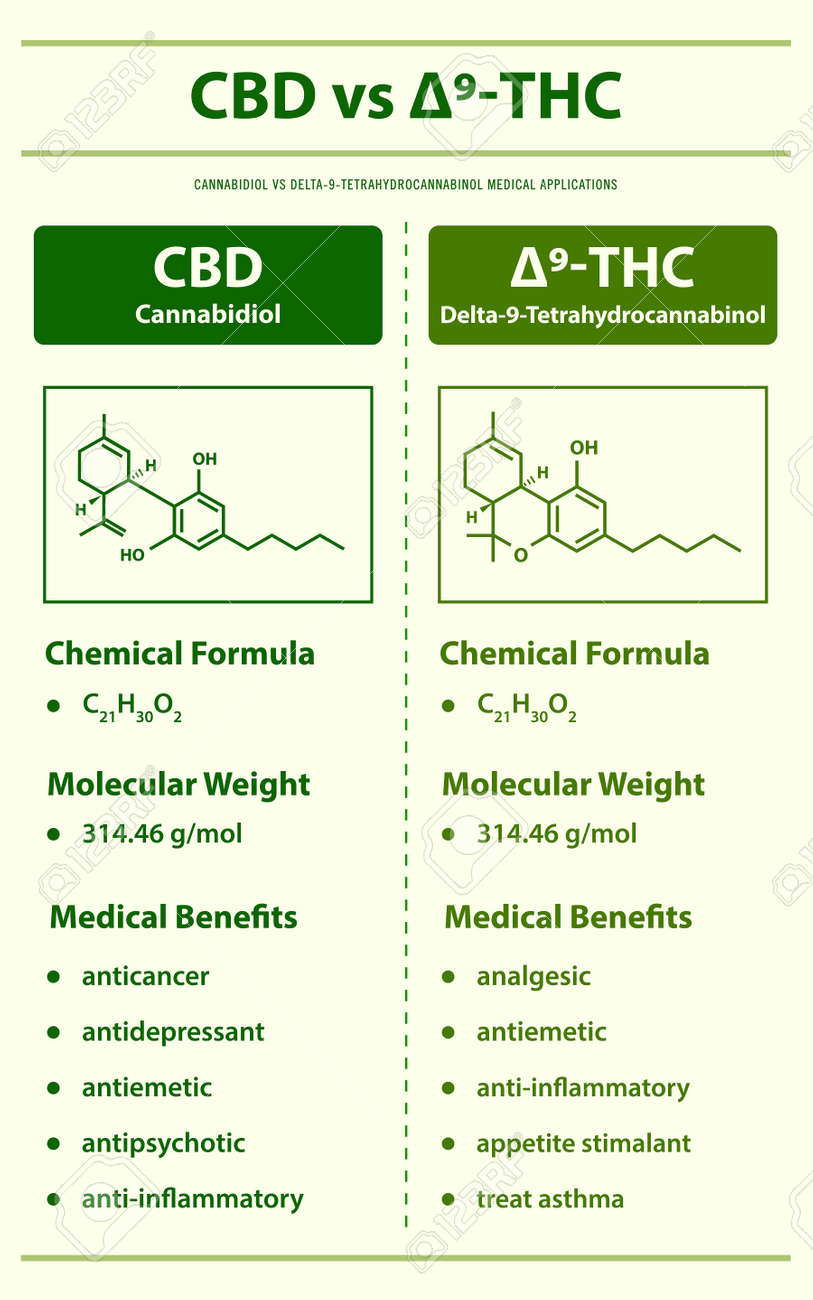 CBE vs ∆9-THC, Cannabisoin vs Delta 9 Tetrahydrocannabinol vertical infographic illustration about cannabis as herbal alternative medicine and chemical therapy, healthcare and medical science vector. - 165249834