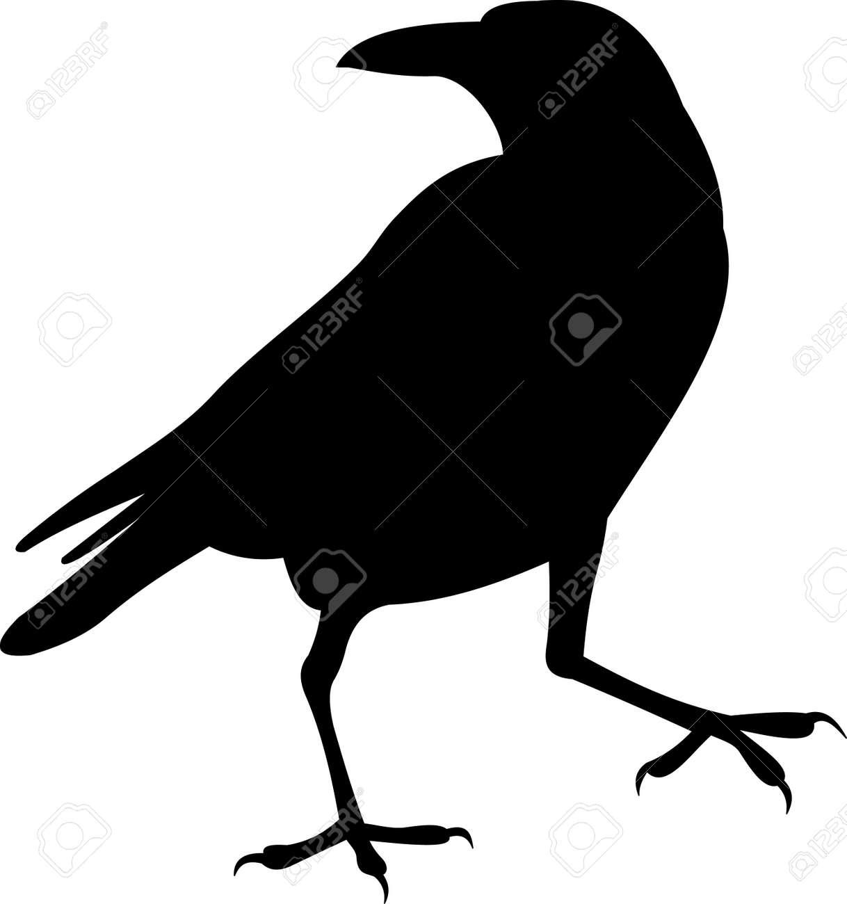 Raven clipart poe