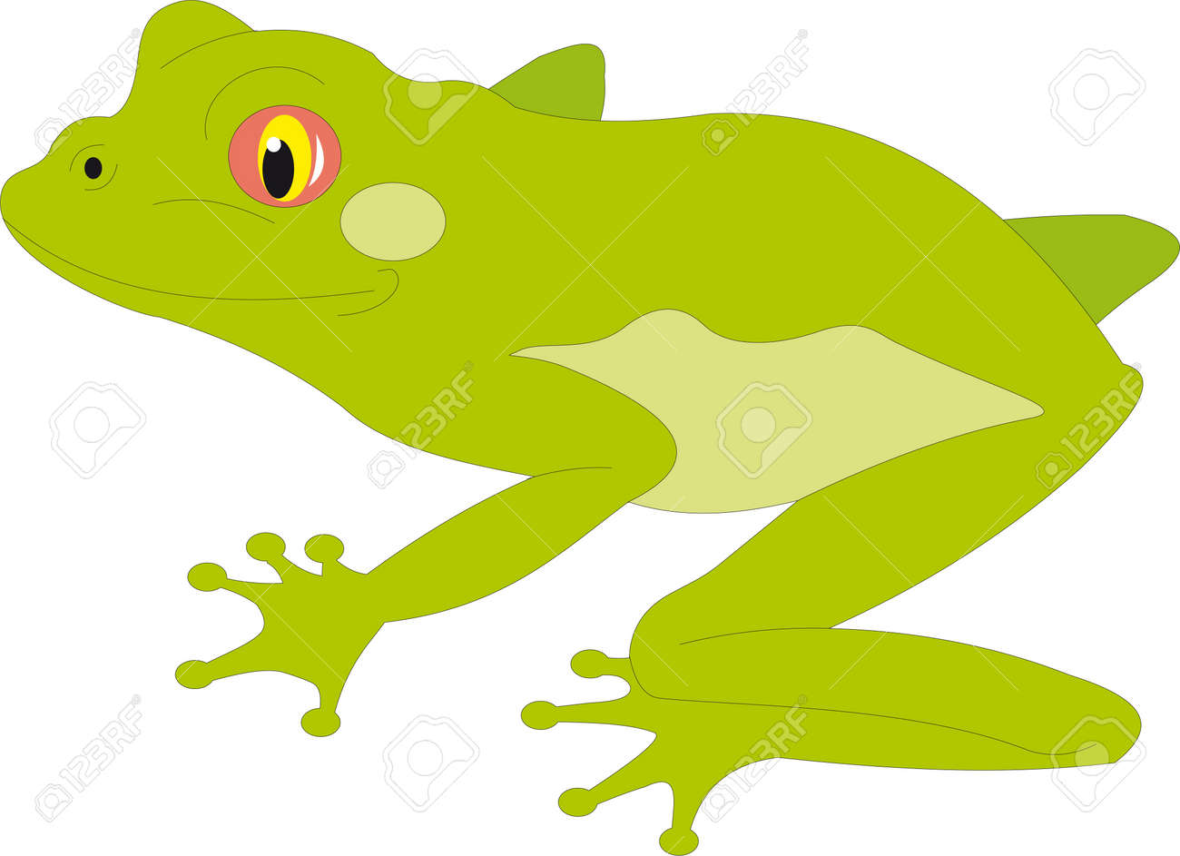 Frog vector Stock Vector - 9182391