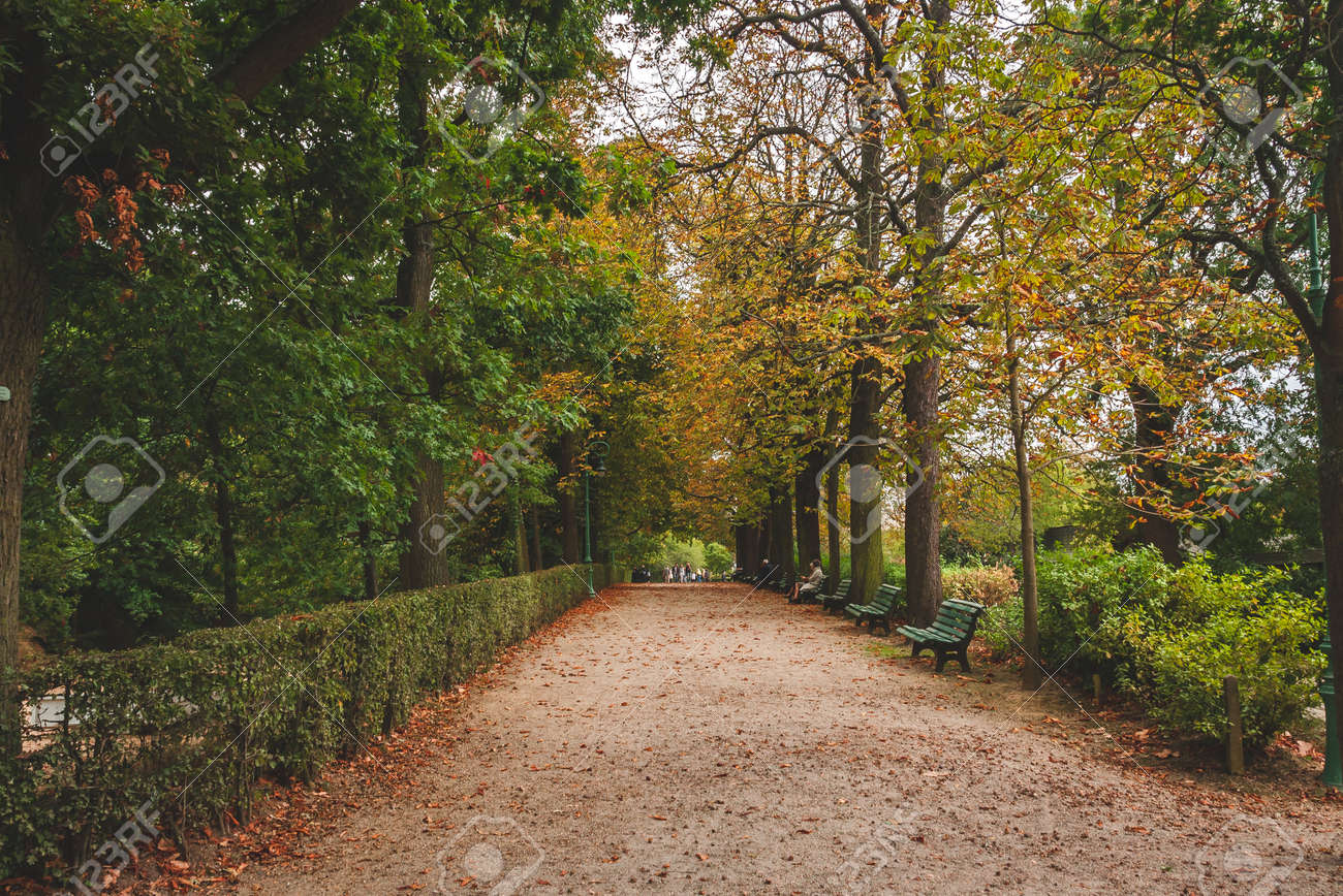 Autumn View On One Of Peaceful Alleys Of Thabor Gardens Of Rennes ...