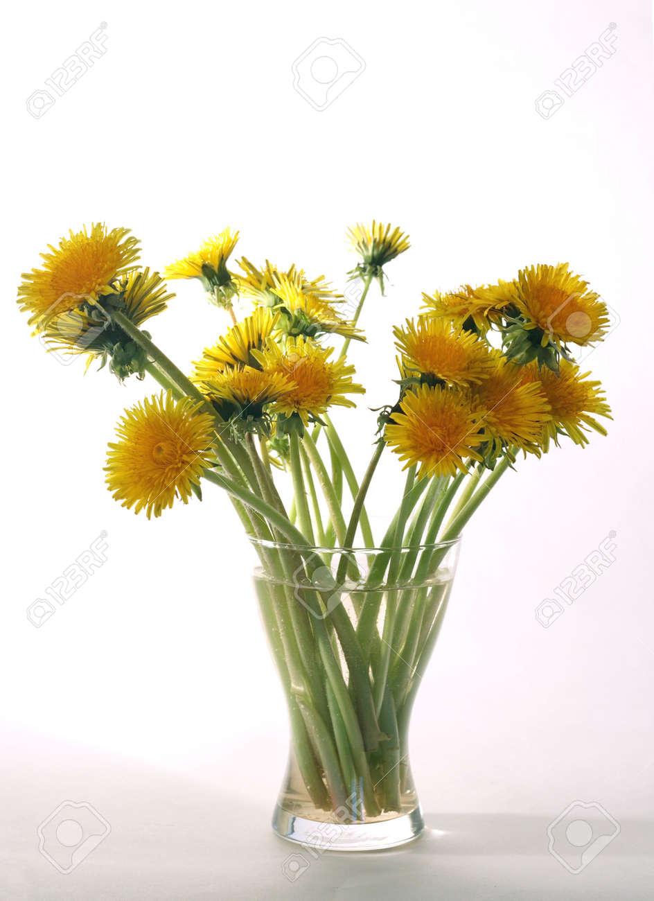 Vase Water Light White Yellow Flower Flowers Bouquet Stock