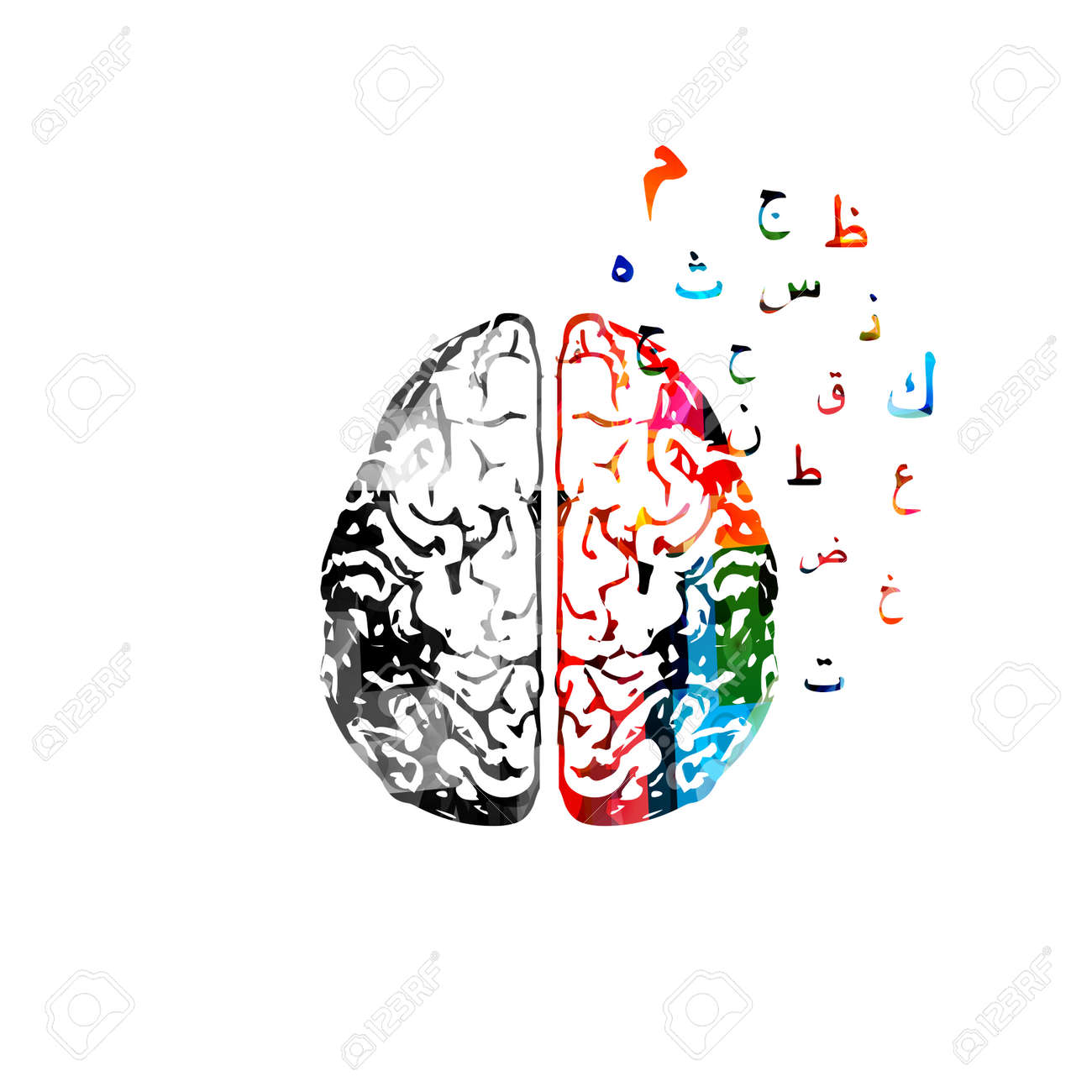Colorful human brain with arabic calligraphy symbols royalty free colorful human brain with arabic calligraphy symbols stock vector 85980656 buycottarizona Gallery
