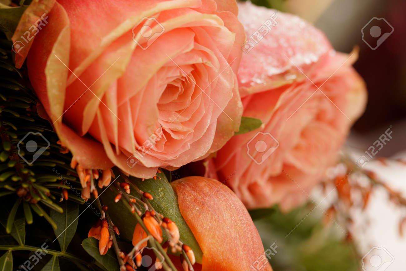 Macro on frozen pink roses. Funeral arrangement - 125520864