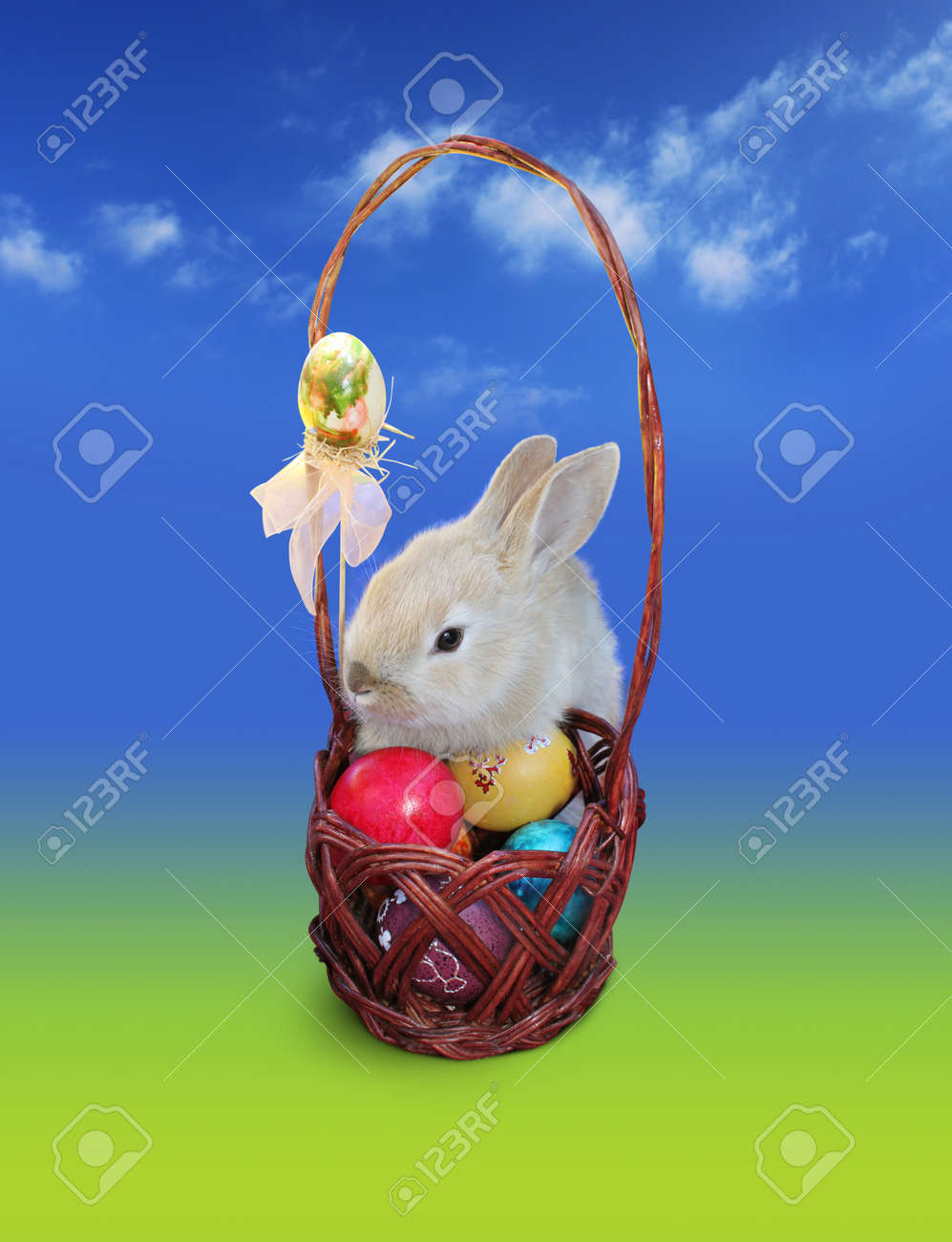 Cute Easter bunny with Easter eggs basket, isolated over blue - green background - 12632520