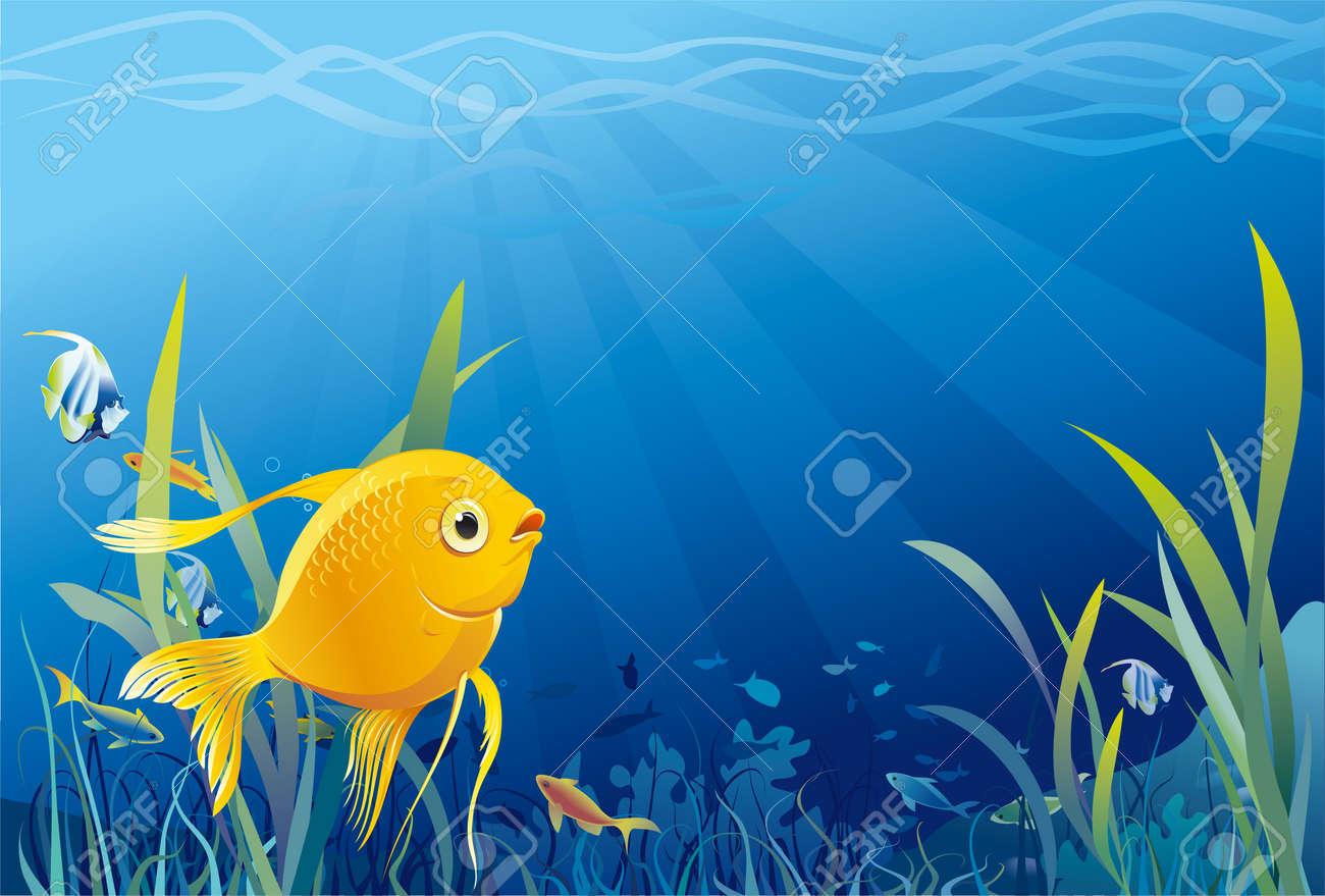 Gold fish in sea - 32652637
