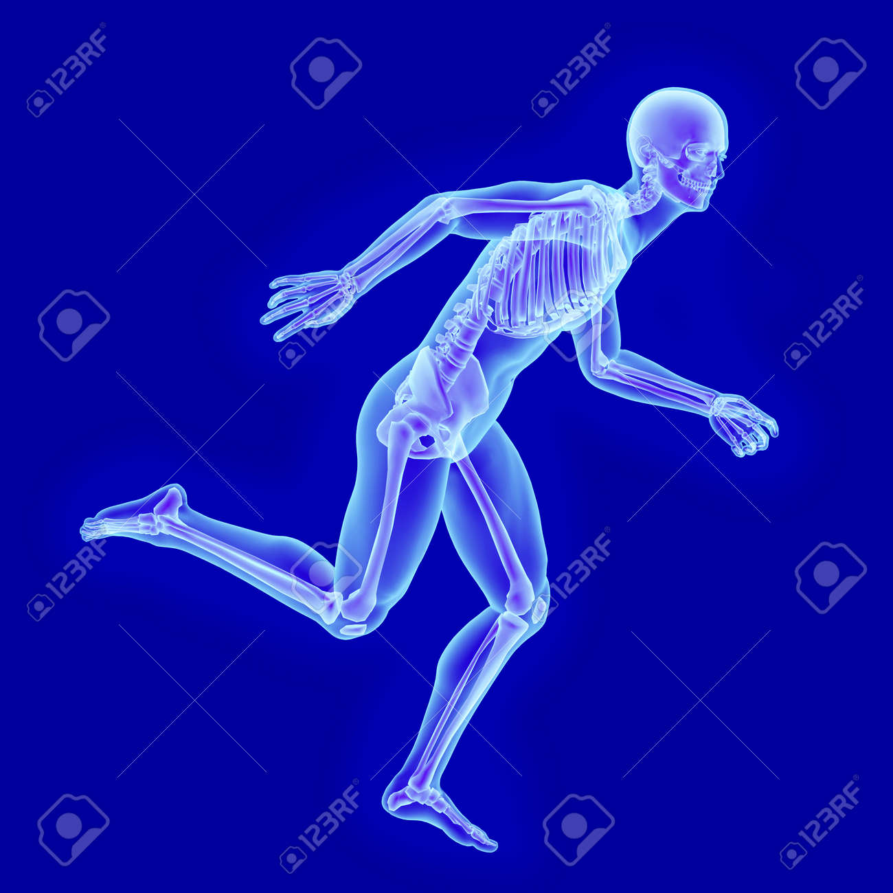 X-ray Anatomy Of A Running Man With Visible Skeleton Stock Photo ...