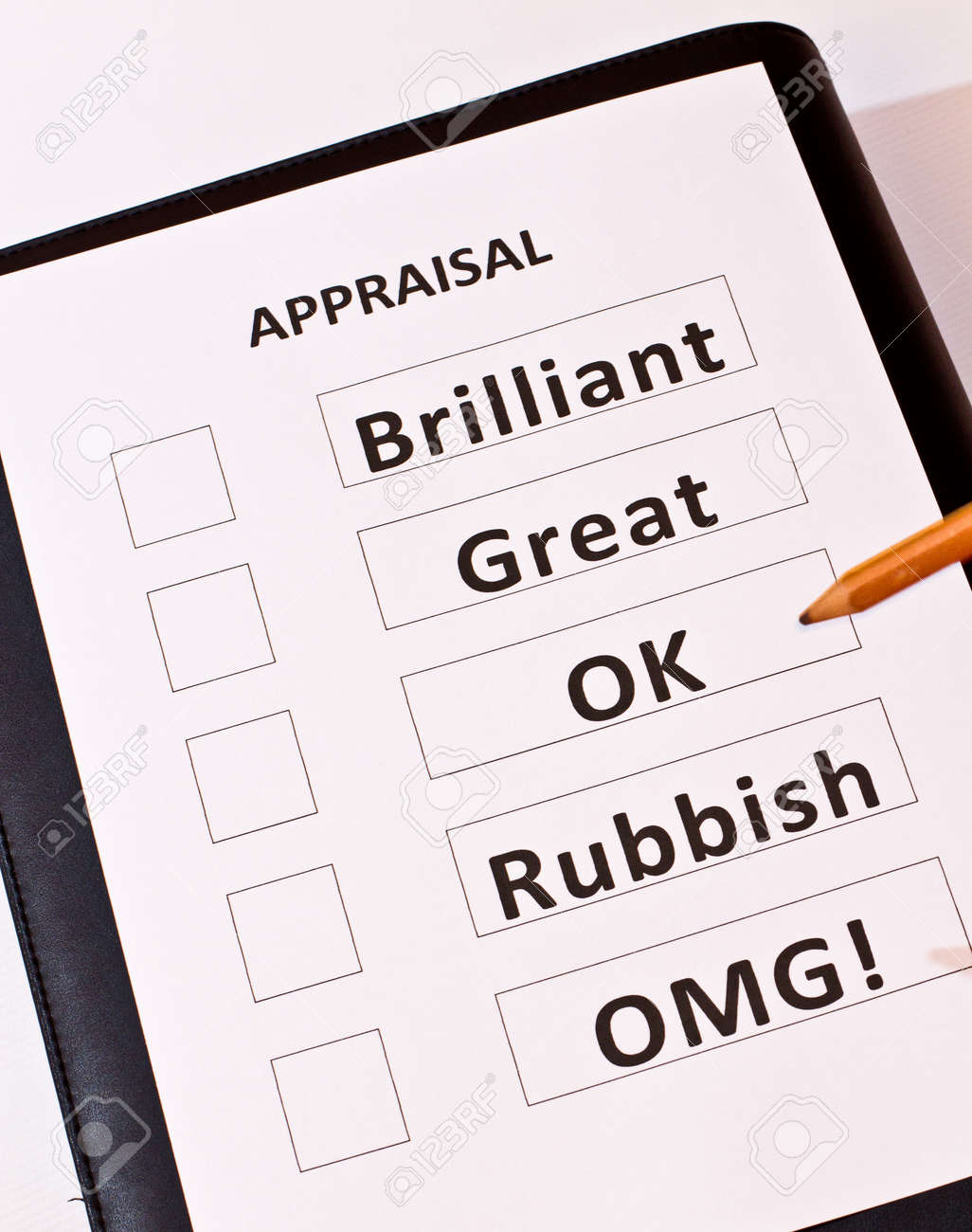 A fun performance appraisal form stock photo picture and royalty a fun performance appraisal form stock photo 14172183 falaconquin