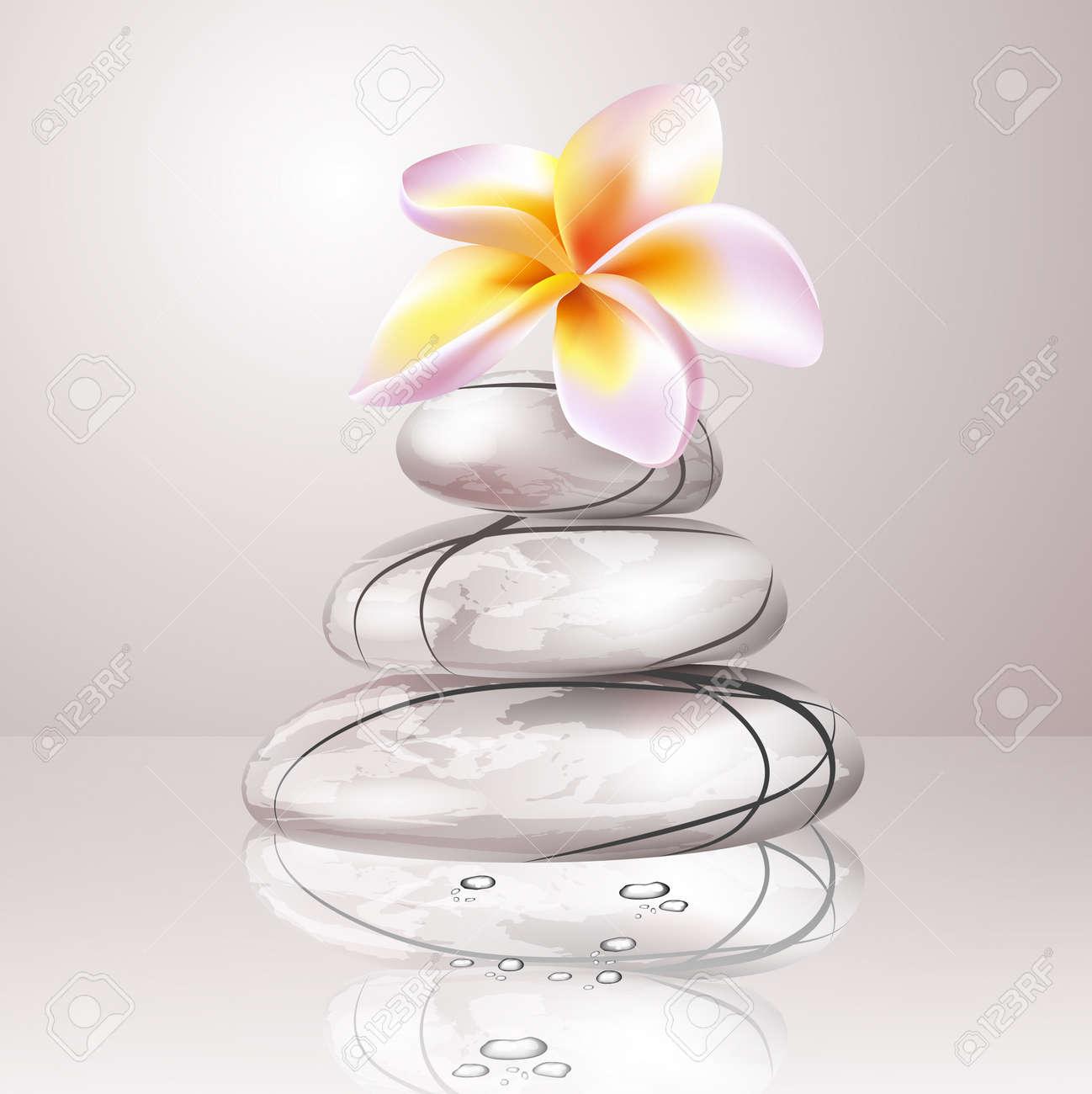 Banque dimages , Zen Spa pierres et des fleurs de frangipanier