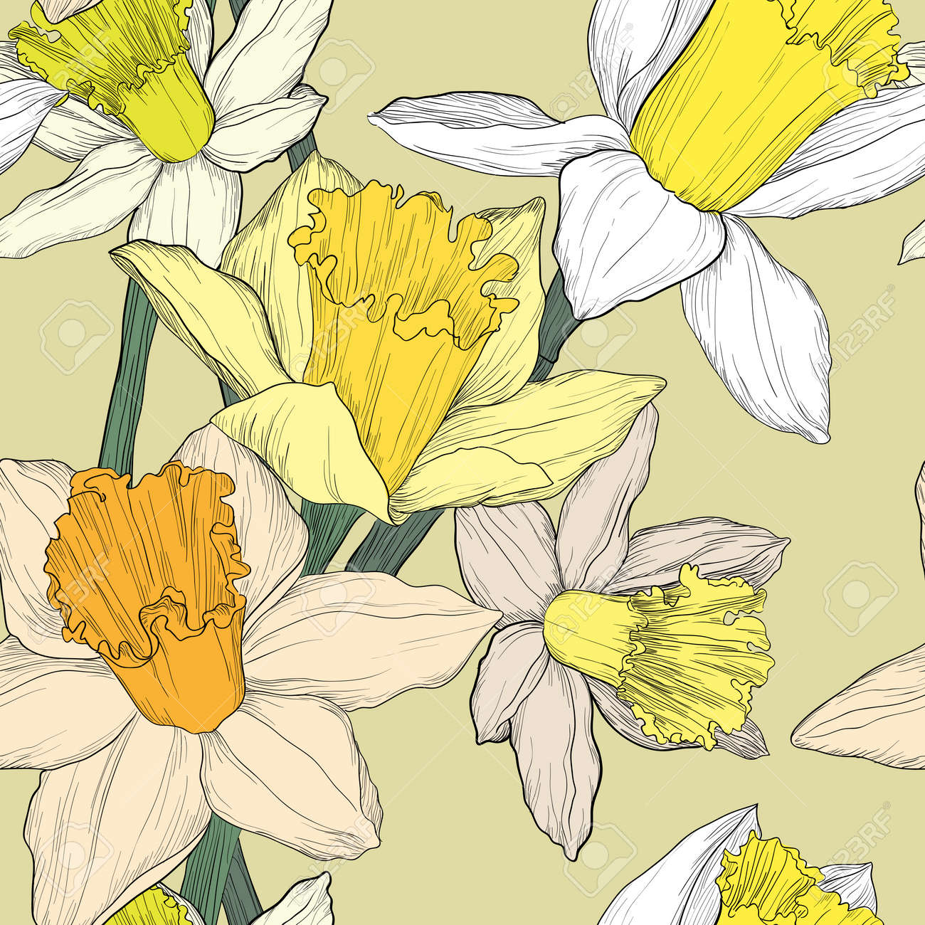 Yellow and white jonquil daffodil narcissus seamless pattern - 52235818