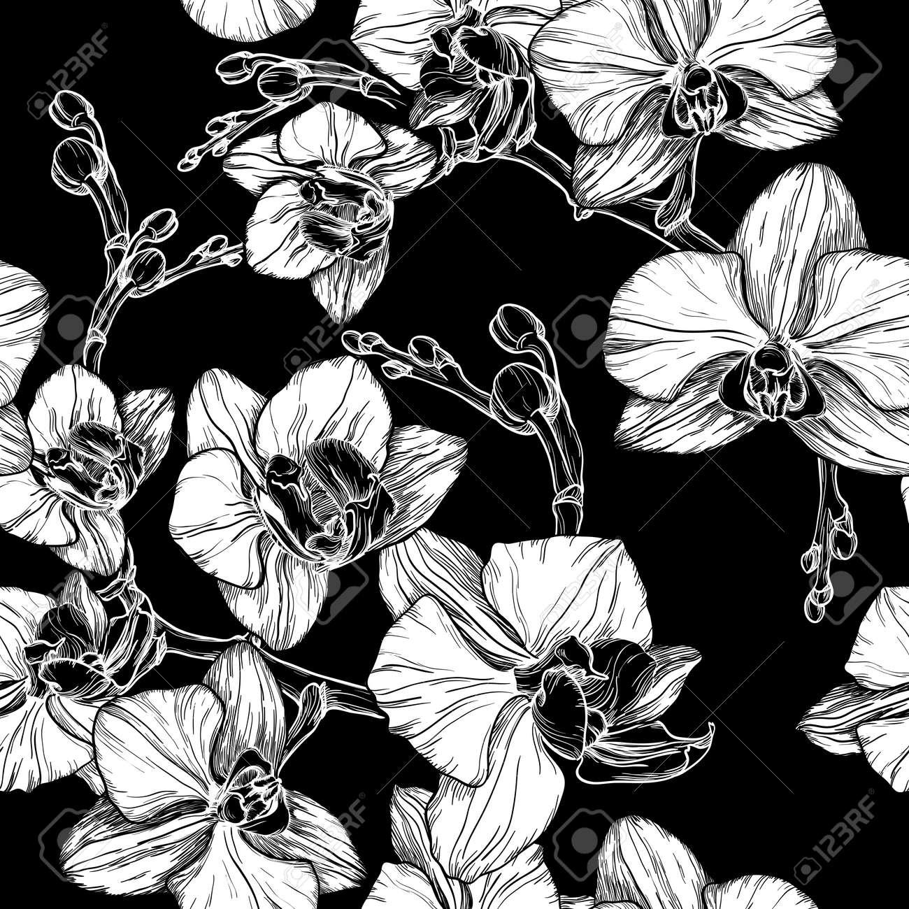 Motif En Noir Et Blanc Sans Soudure Avec Dessin à La Main Orchidée Fleurs